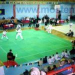 Борцовский ринг